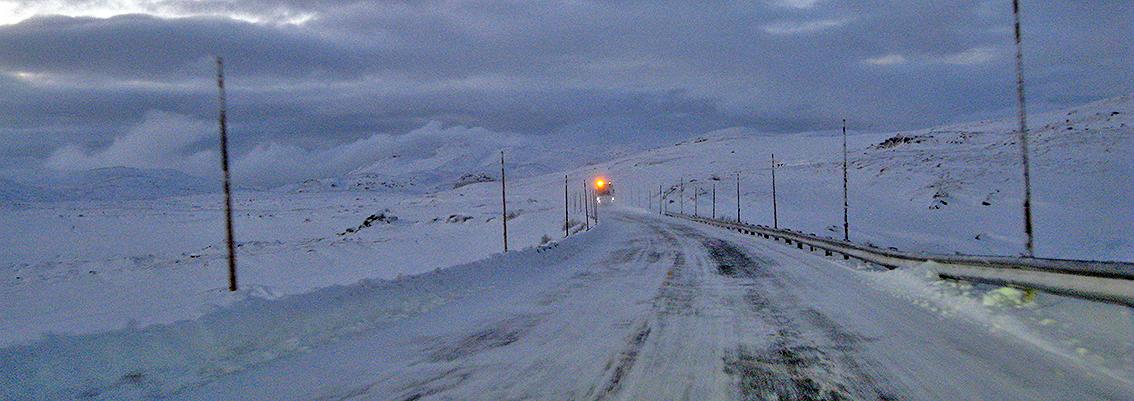 Riksveg 7 over Hardangervidda blir ikke stengt i vinter når villrein kommer nær vegen. Det har Miljødirektoratet bestemt. Arkivfoto: Arne Nyaas