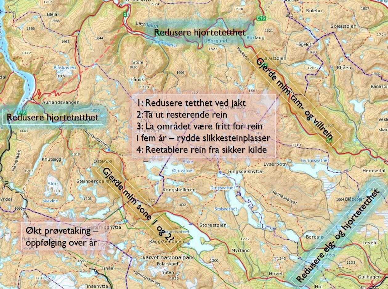 Anbefalte tiltak. Klikk for stort bilde. Figur: Bjørnar Ytrehus/NINA.