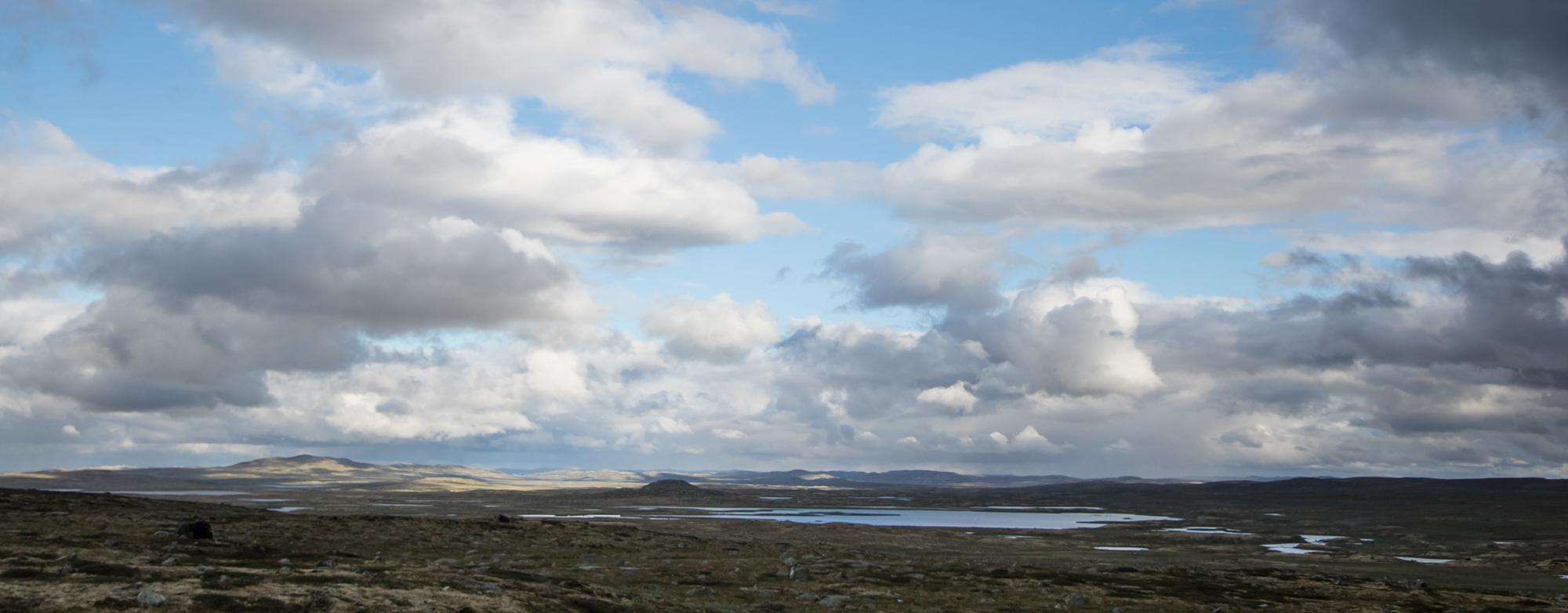 Høyringsdokumenta for rullering av regional plan for vidda er klare. Illustrasjonsfoto: Kjell Bitustøyl