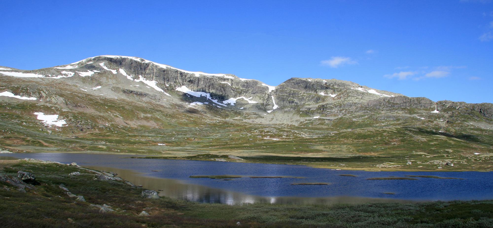 Område aust for Hallingskarvet i Hol kommune. Foto: Anders Mossing