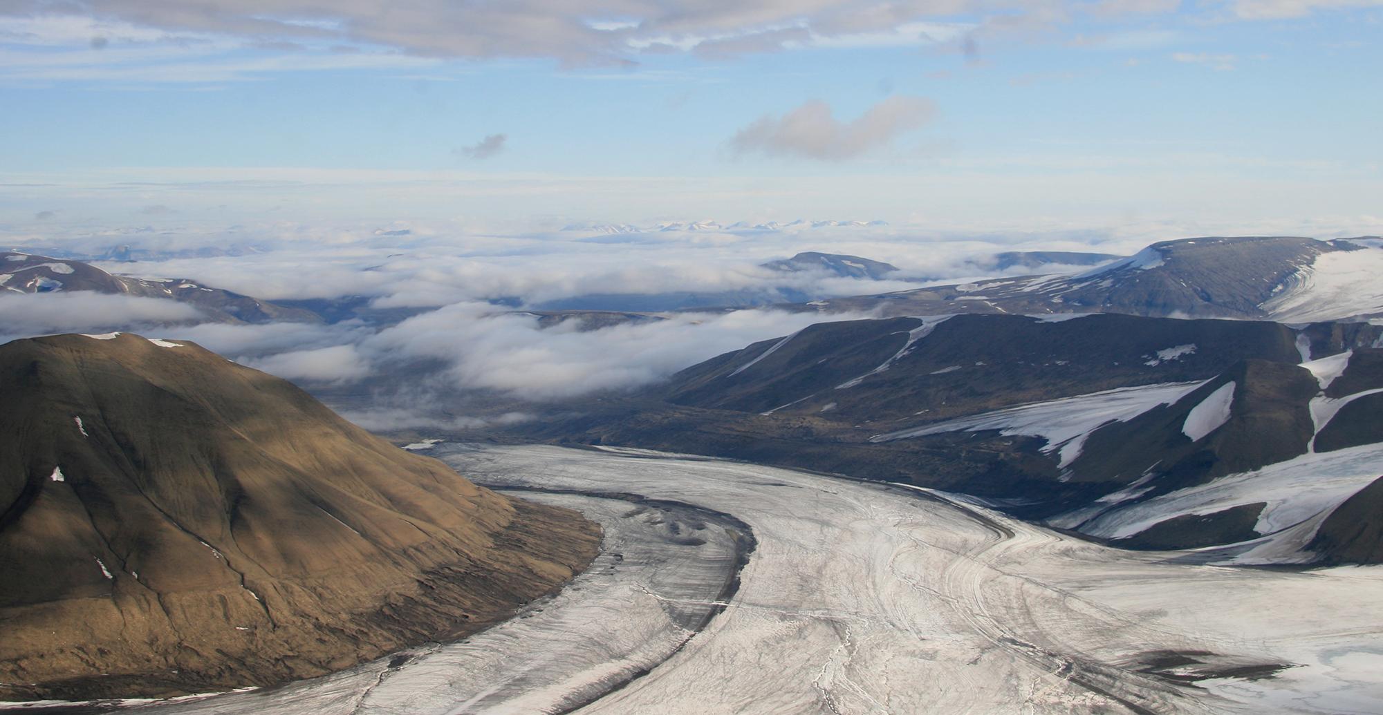 Det er store regionale variasjonar i korleis plantelivet responderer på klimaendringane i arktiske strøk, slik som til dømes på Svalbard. Foto: Anders Mossing