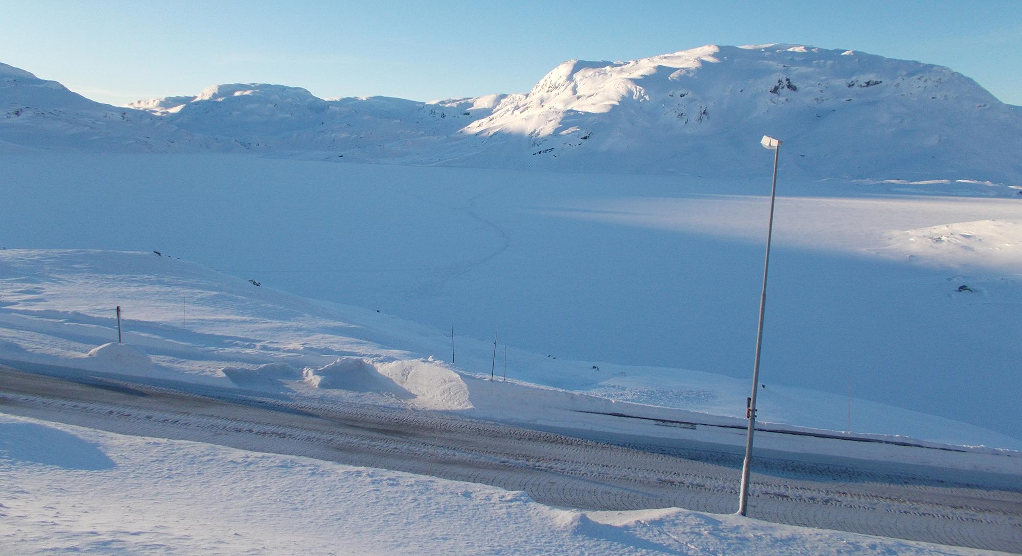 Her har villreinen gjort et mislykket kryssingsforsøk ved Gautevik, Ståvatn i 2016. Foto: Tommy Sandal