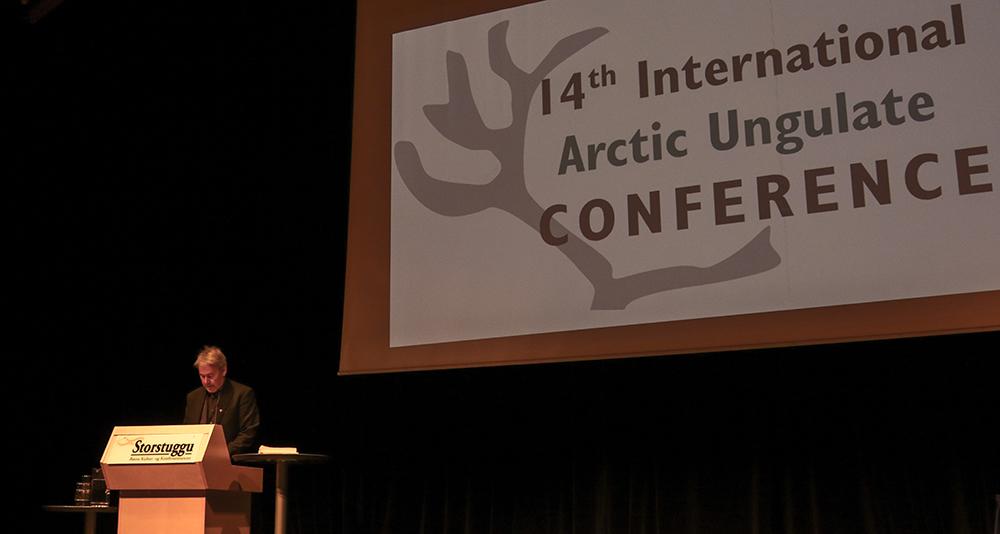 Frå 2015 då Arctic Ungulate Conference blei arrangert på Røros, på talarstolen Vemund Jaren frå Miljødirektoratet som saman med NINA var vertskap for AUC dette året. Foto: Kjell Bitustøyl