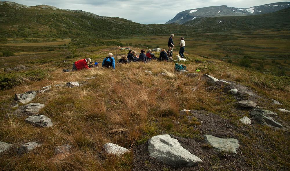 Sannsynleg samisk tuft i Byrkjedalen nord for Hallingskarvet i Hallingdal. Kan samar ha vore med som ekspertar i samband med massefangstanlegg for rein? Foto: Kjell Bitustøyl
