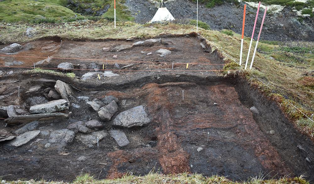 Tufta som blei graven ut av arkeologar sommaren 2018 ved massefangstanlegget på Verket. Foto: Brit Solli