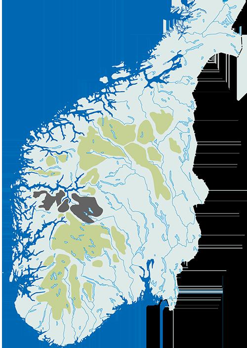 Villreinområder_norsk_omriss_nordfjella++.png