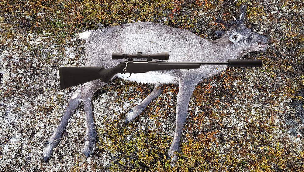 Bildet/bildene skal tas av dyret liggende på siden og mest mulig rett ovenfra. Et jaktvåpen eller annet som kan si noe om omtrent mål er ønskelig. Bilde over er manipulert for illustrasjon. Foto: Anders Mossing