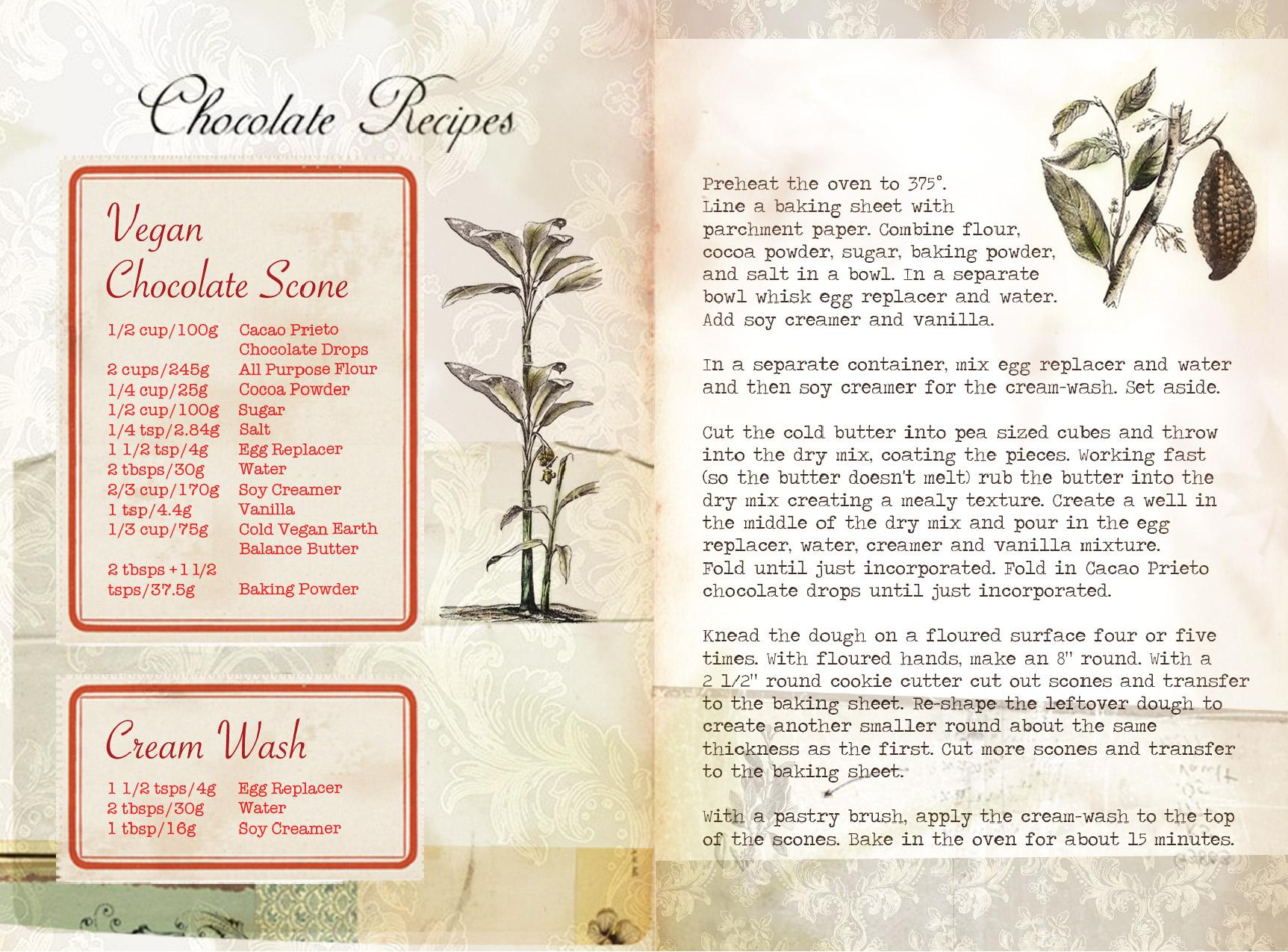 CacaoPrieto_Booklet_CS5-11.jpg