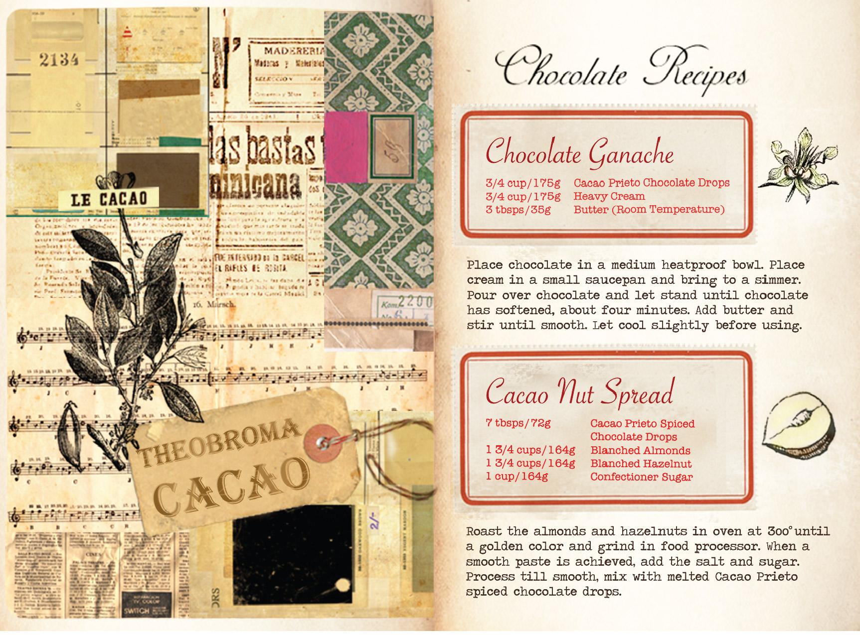 CacaoPrieto_Booklet_CS5-09.jpg