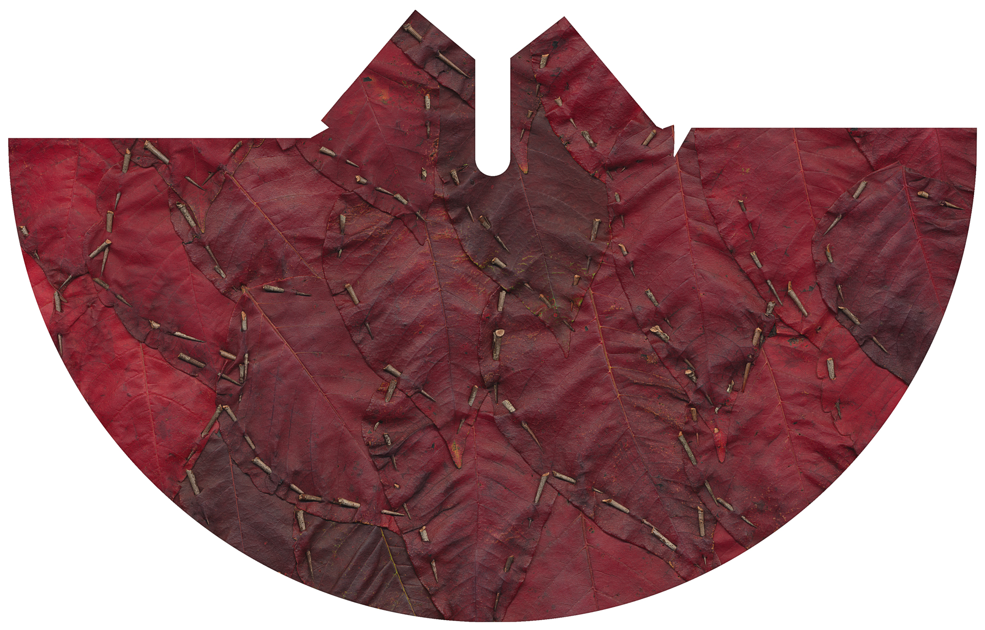 "Red Leaf and Hawthorn Tipi Cover, 2017.  Photograph. Leaves and hawthorns. Archival print 76"" X 43"".   Red Leaf and Hawthorn  celebrates the beauty and resilience of wild plants, and their ability to thrive in hostile environments. The leathery leaves used in this work grow along the railway line on an overpass in the heart of Montreal. The hawthorns, although painful to pick, stitch the leaves together perfectly."
