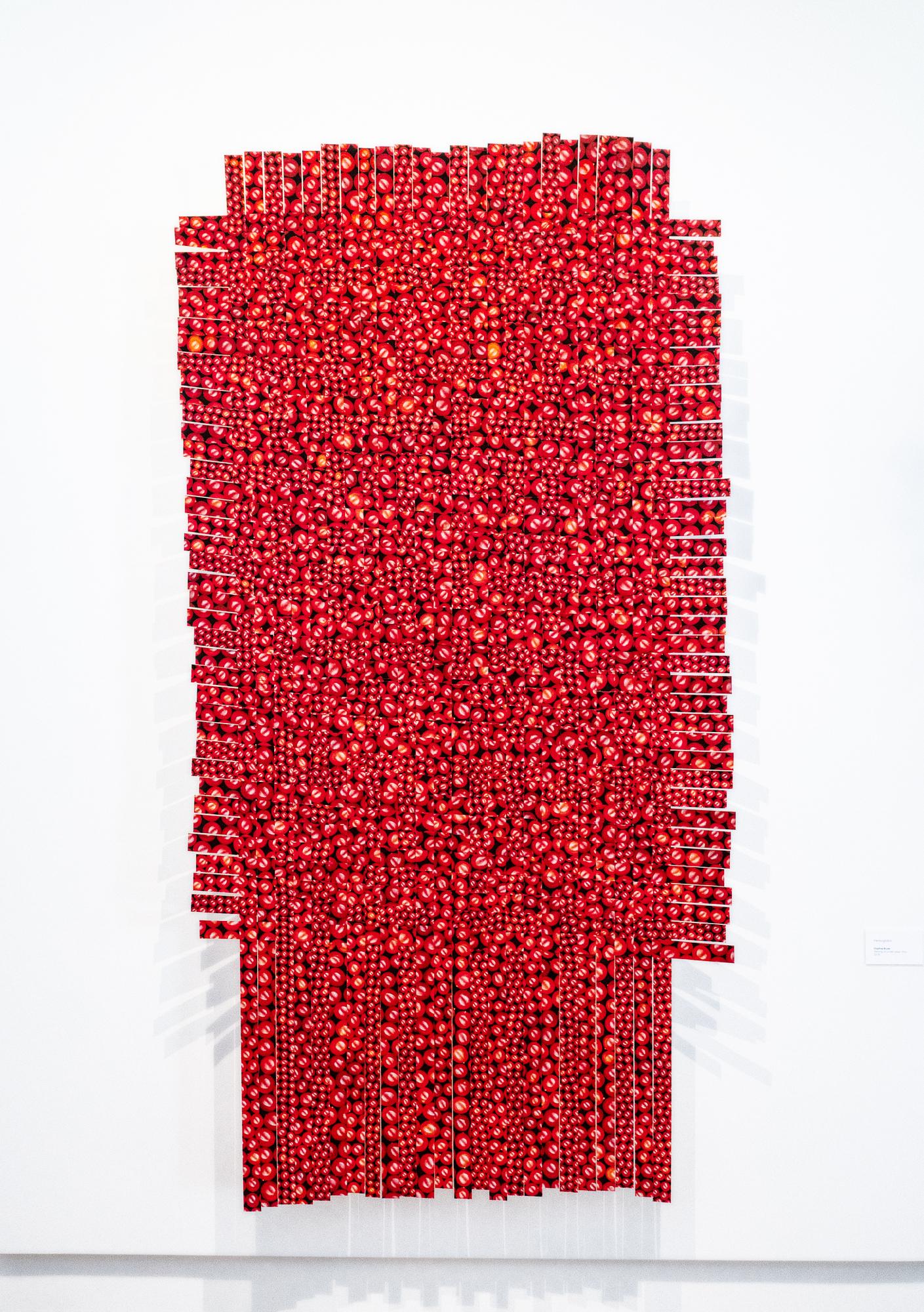 Hemoglobin final v1.jpg