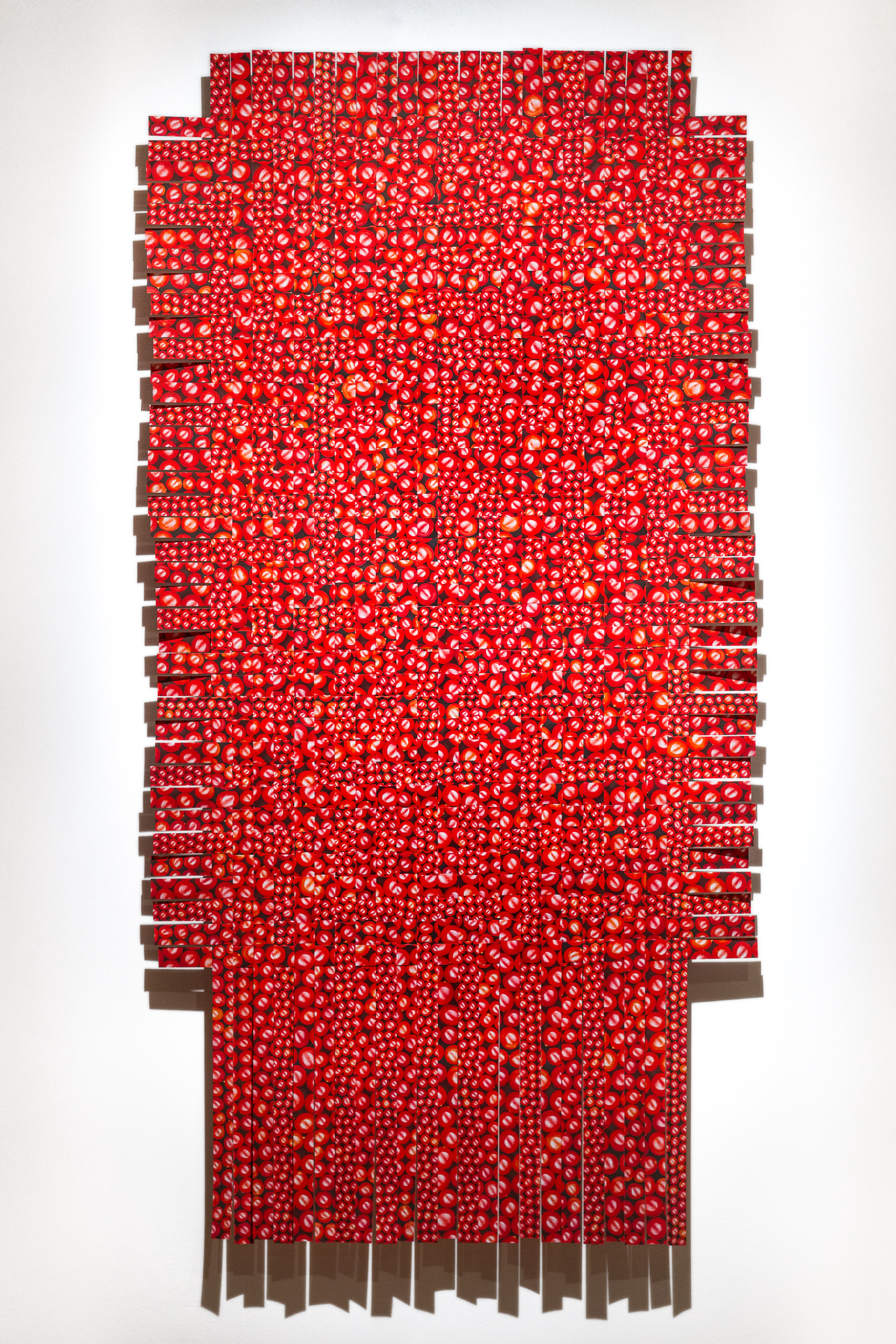 Hemoglobin, 2018.   Staged and photographed cranberries arranged in an infinity pattern and printed. Image cut into strips and woven. Archival print 7' X 3.5'.