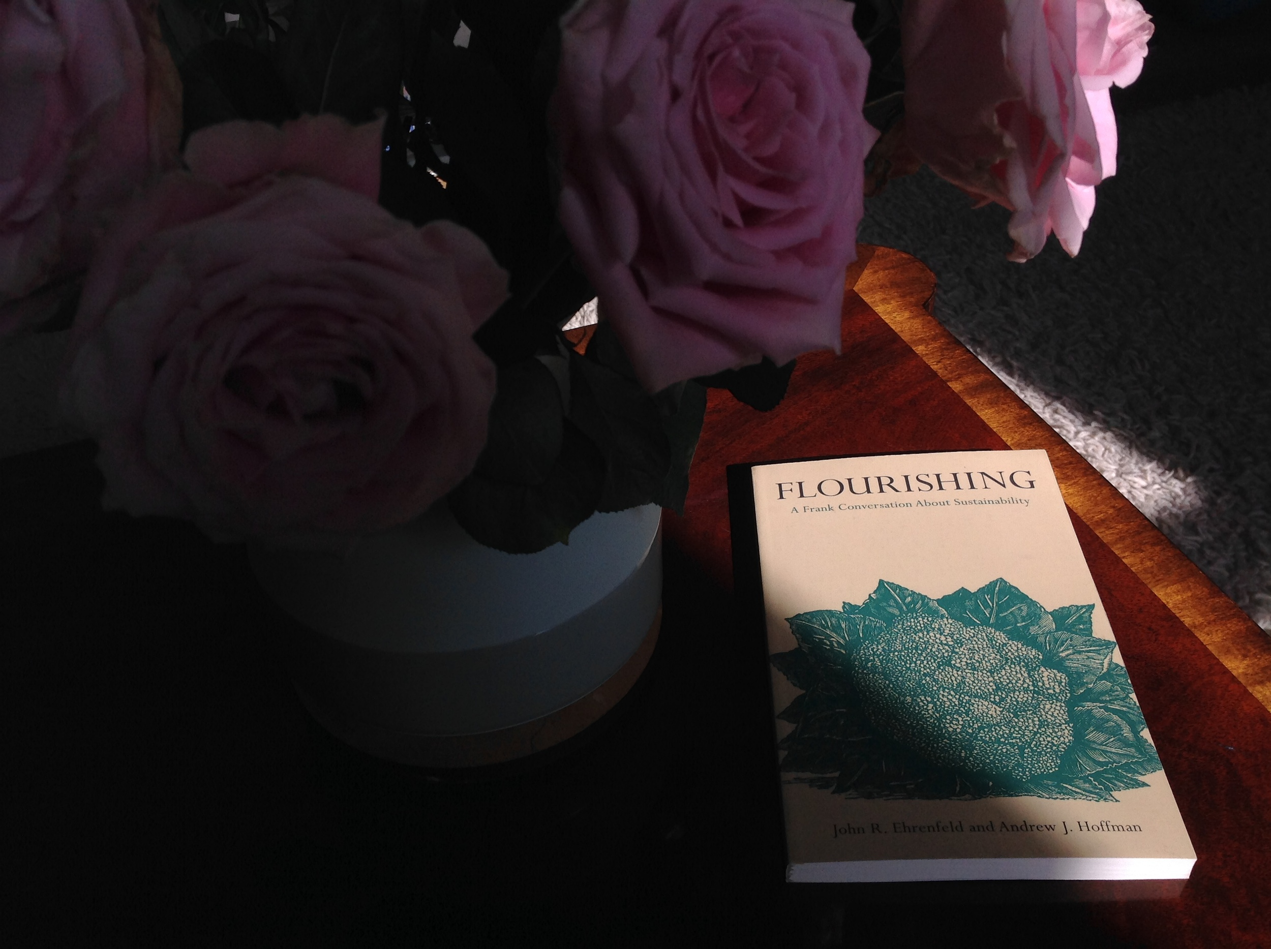 'Flourishing: A Frank Conversation About Sustainability' by John Ehrenfeld and Andrew Hoffman (Stanford, 2013)