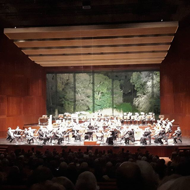 Concerto de ano novo @fcgulbenkian #tradition  #music #classicmusic #newyear  #gulbenkian