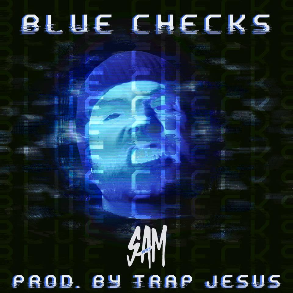 BLUE CHECKS large.jpg