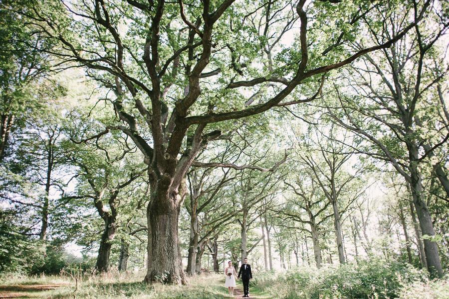 Bröllopsfotograf Perhenning