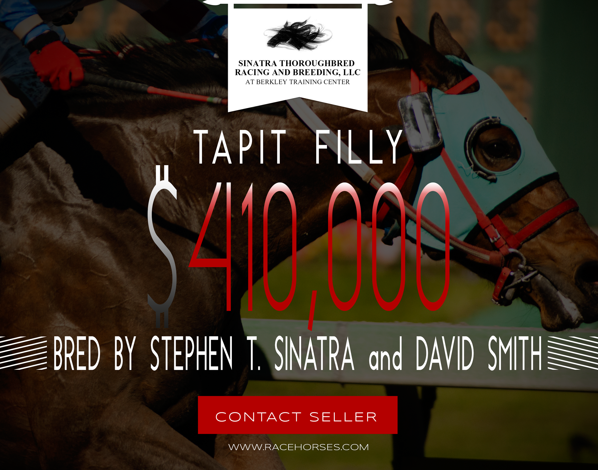 Tapit Filly for sale. Bred by Stephen T. Sinatra and David Smith