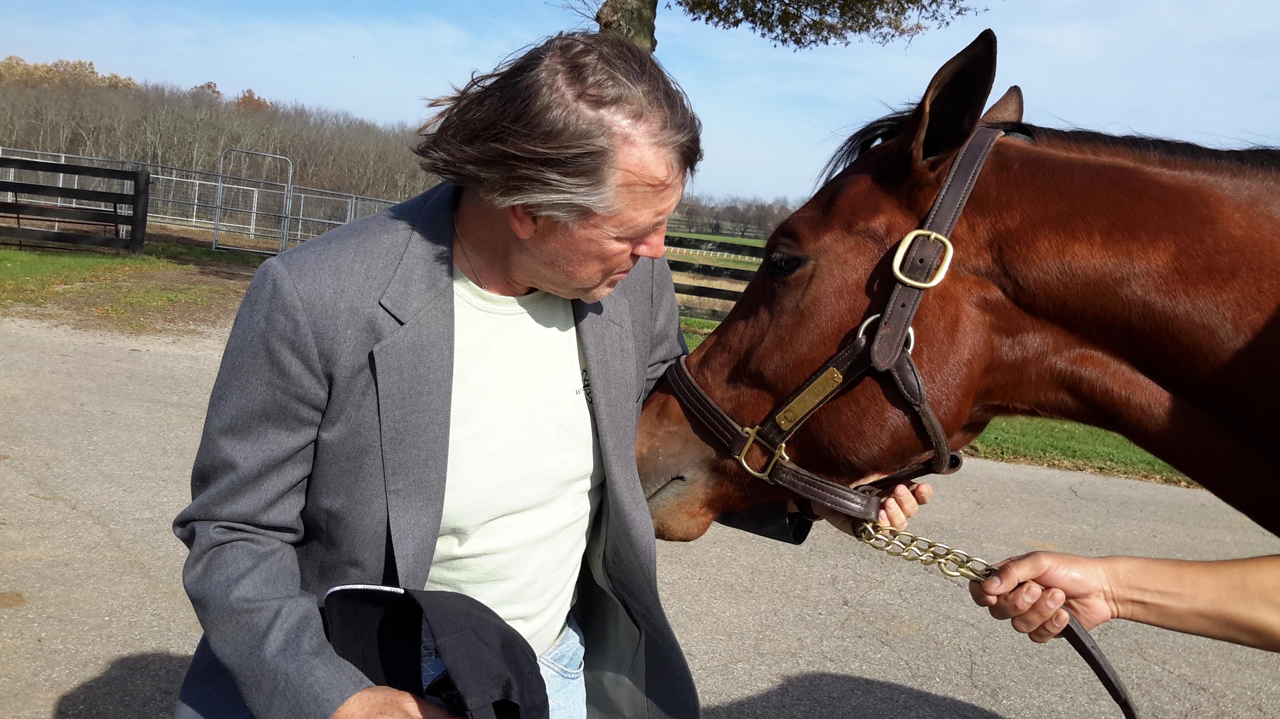 All horses need love.