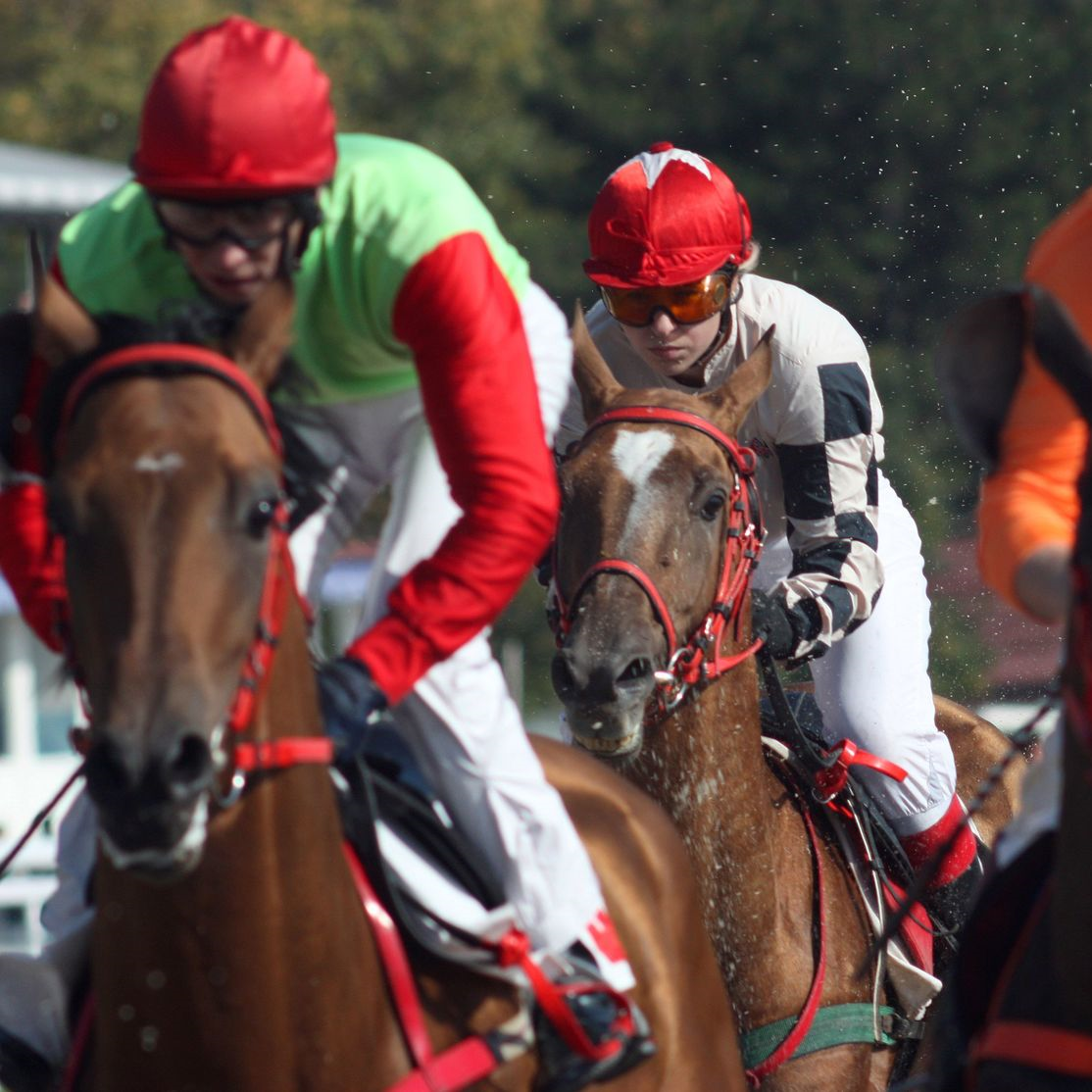 North American Horse Racing Terminology - Length