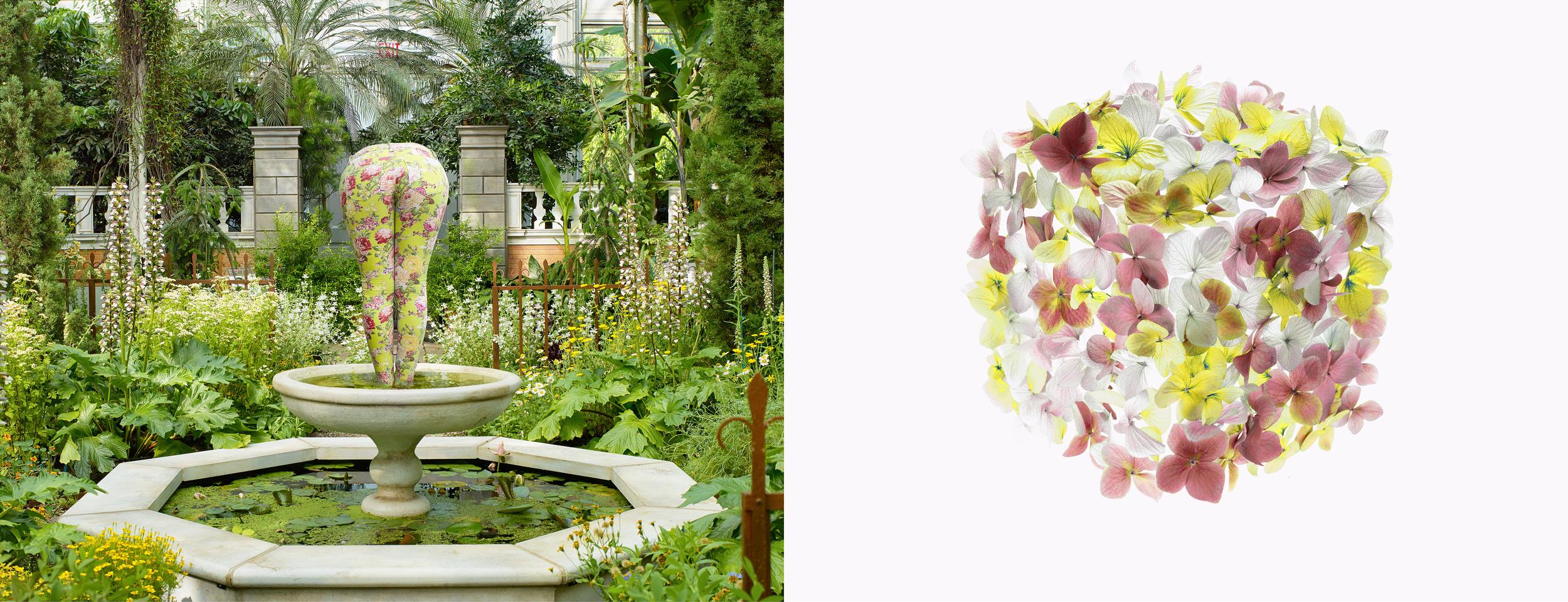 Botanical_15.jpg