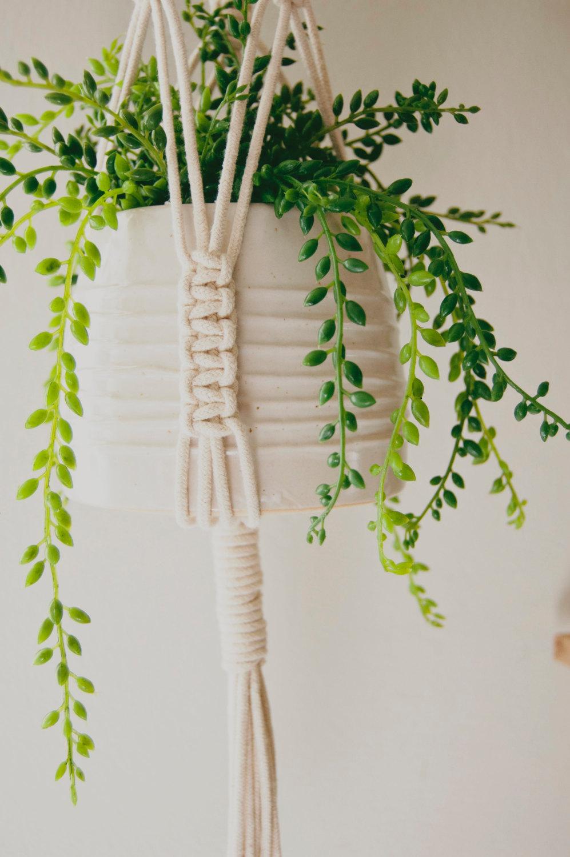 cotton-wood-plant-hanger-zoon-bottom.jpg