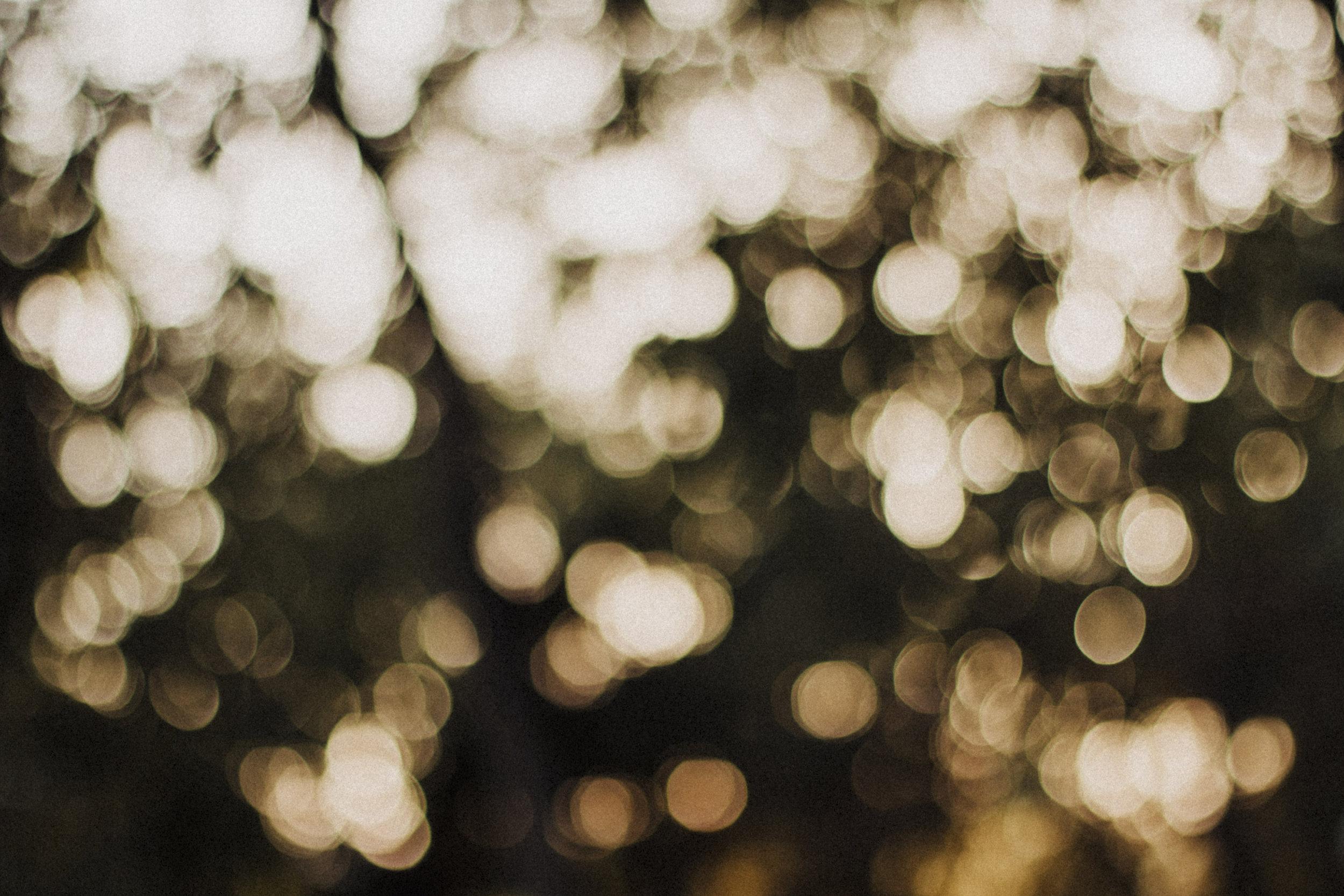 holiday-lights.jpeg