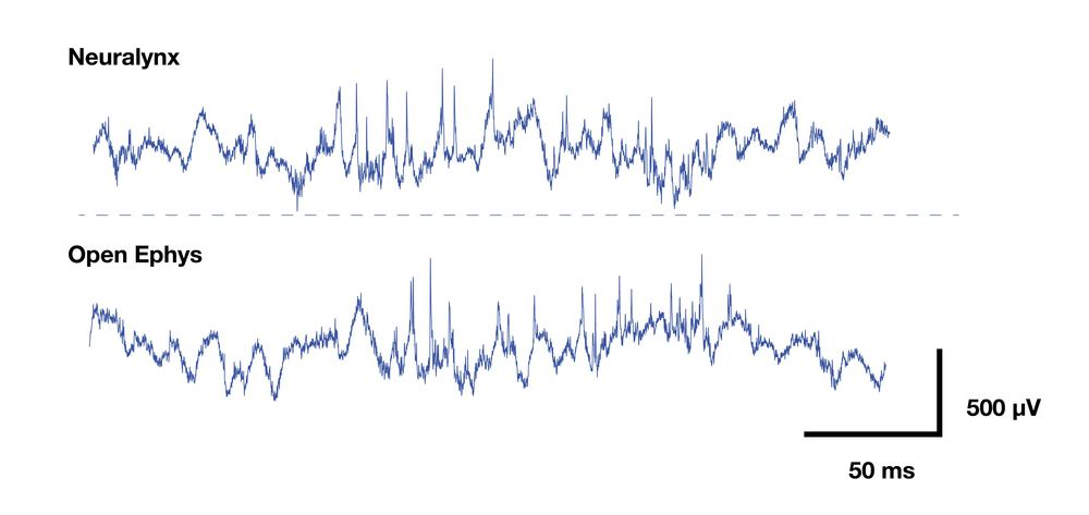 Zooming in, it's clear that the signal quality is basically identical.