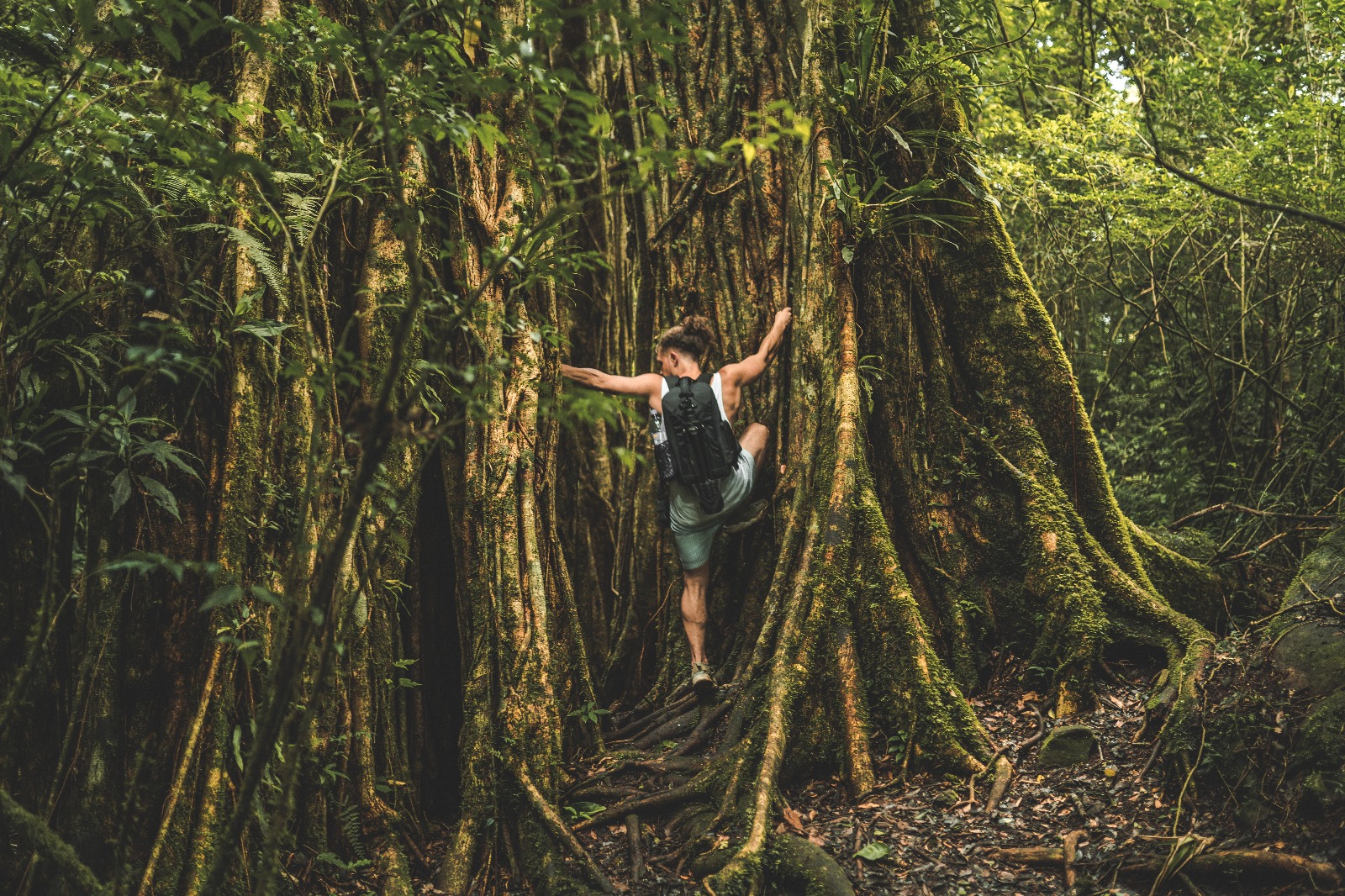 Indiana Jones Jungle Treasure Hunt