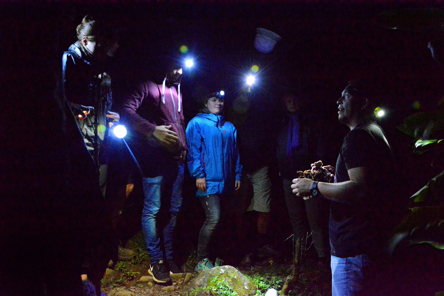 The Night Hike