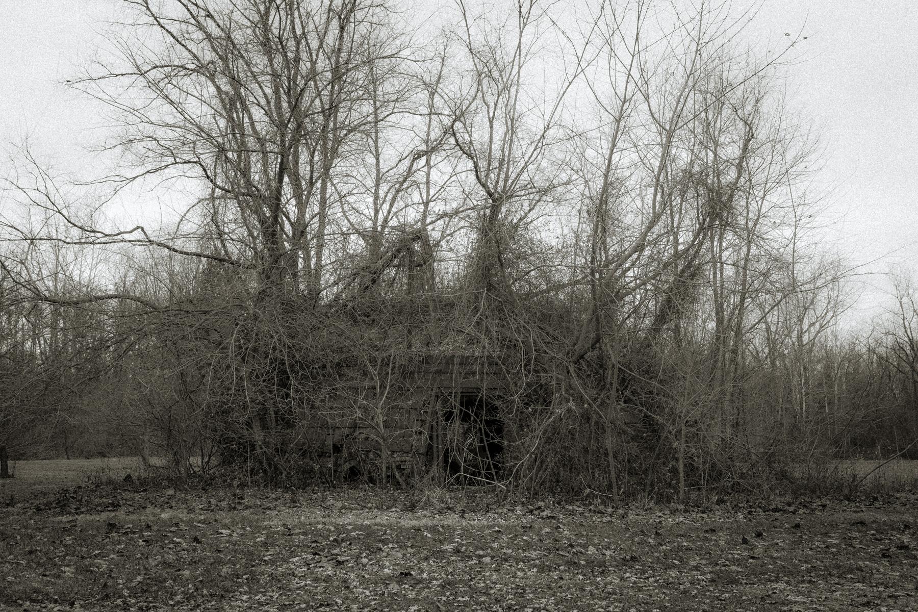 Dead Kiln