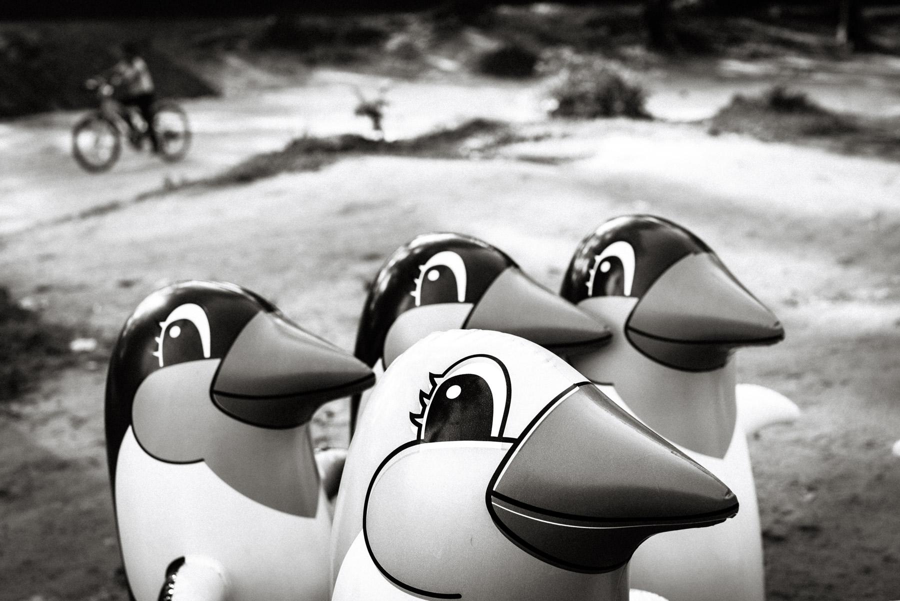 Penguin Merchant