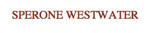 Sperone Westwater.jpg