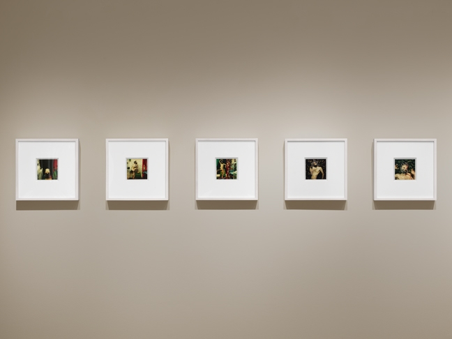 To see the installation views of Samaras'one-of-a-kind Polarioids in PSG frames, click  here .
