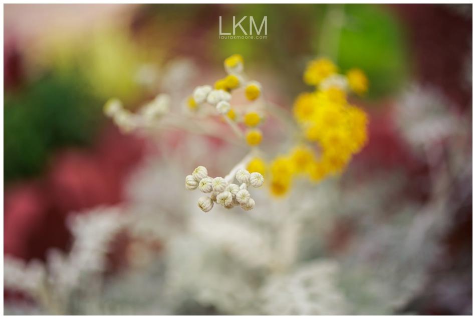 san-jose-backyard-wedding-plum-orchids-DIY-inspiration_0117.jpg