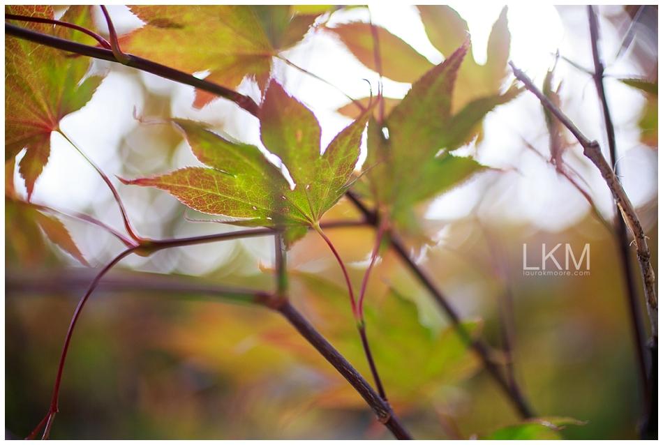 san-jose-backyard-wedding-plum-orchids-DIY-inspiration_0120.jpg