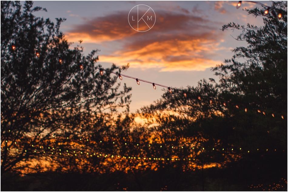 saguaro-buttes-tucson-spring-garden-wedding-auerbauch_0086.jpg