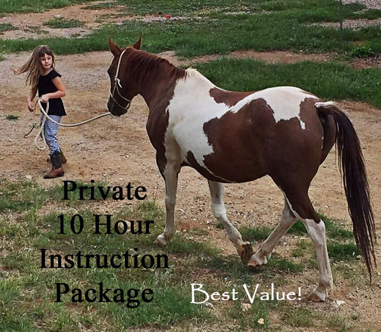 Instruction Fee:  $275. Private 10 Hour instruction package that you customize to fit into your schedule. Prepayment is required. This is the best discounted value. No Stallions Please.