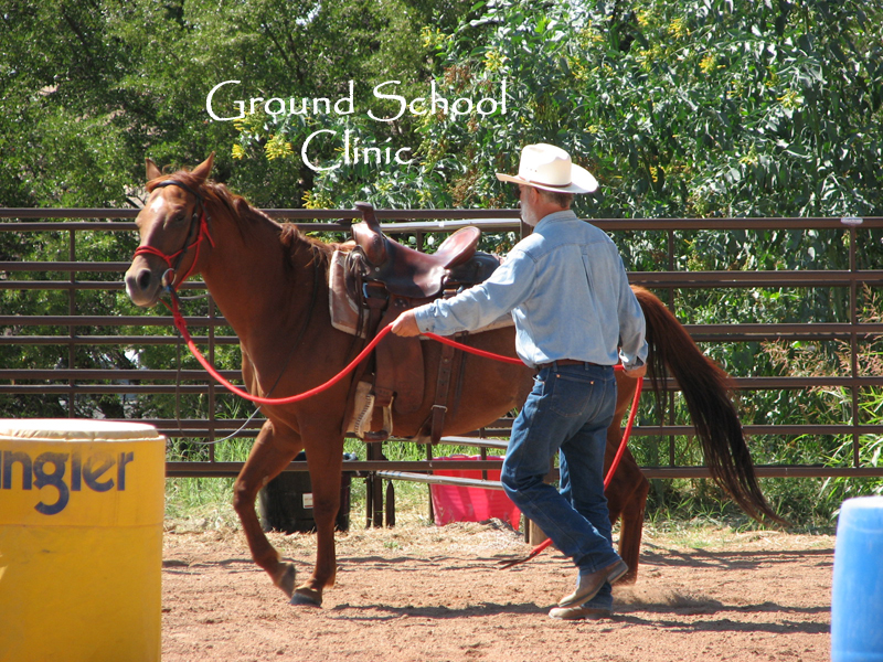 Ground School Clinic    Clinic Fee : $100.  Limited  to 5 students & their horse. The Ground School Clinic is a 1 day clinic. Students will be working various tasks from the ground with their horses. The tasks are to build confidence, softness, and suppleness for you and your horse on the ground which will later transfer to under saddle. Softness and suppleness provide a safer environment for the rider and horse. This is not an under saddle (riding) clinic. No Stallions Please.