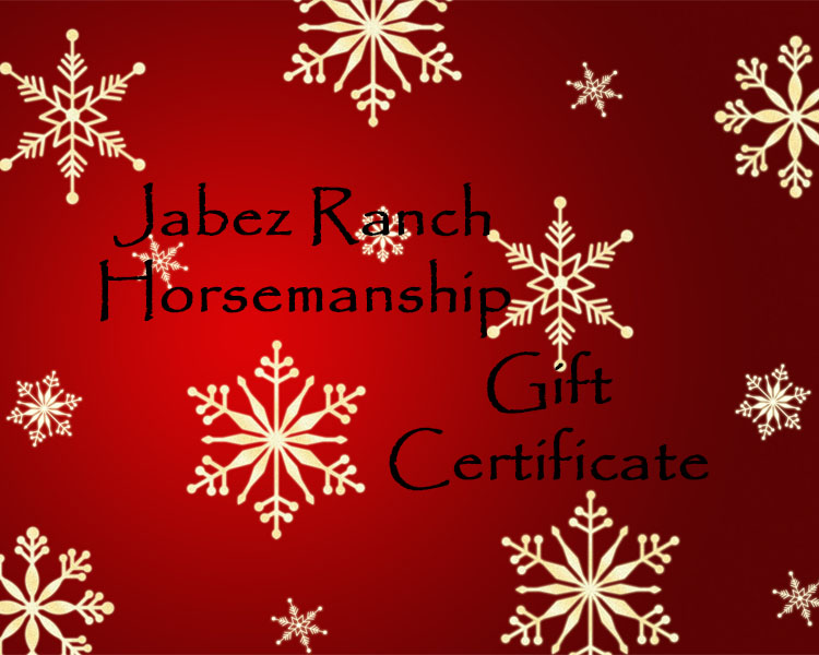Gift Certificates are in $50 increments. Purchase your desired amount for a Gift Certificate. We will provide you with a Gift Certificate for the total amount that may be applied to any Jabez Ranch clinic or merchandise.