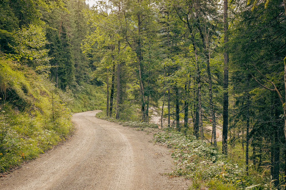 Vom Parkplatz aus geht man ca. eine Stunde einen Waldweg zum Marienstein. Wenn man nebenbei fotografiert dauert das alles etwas länger. :)