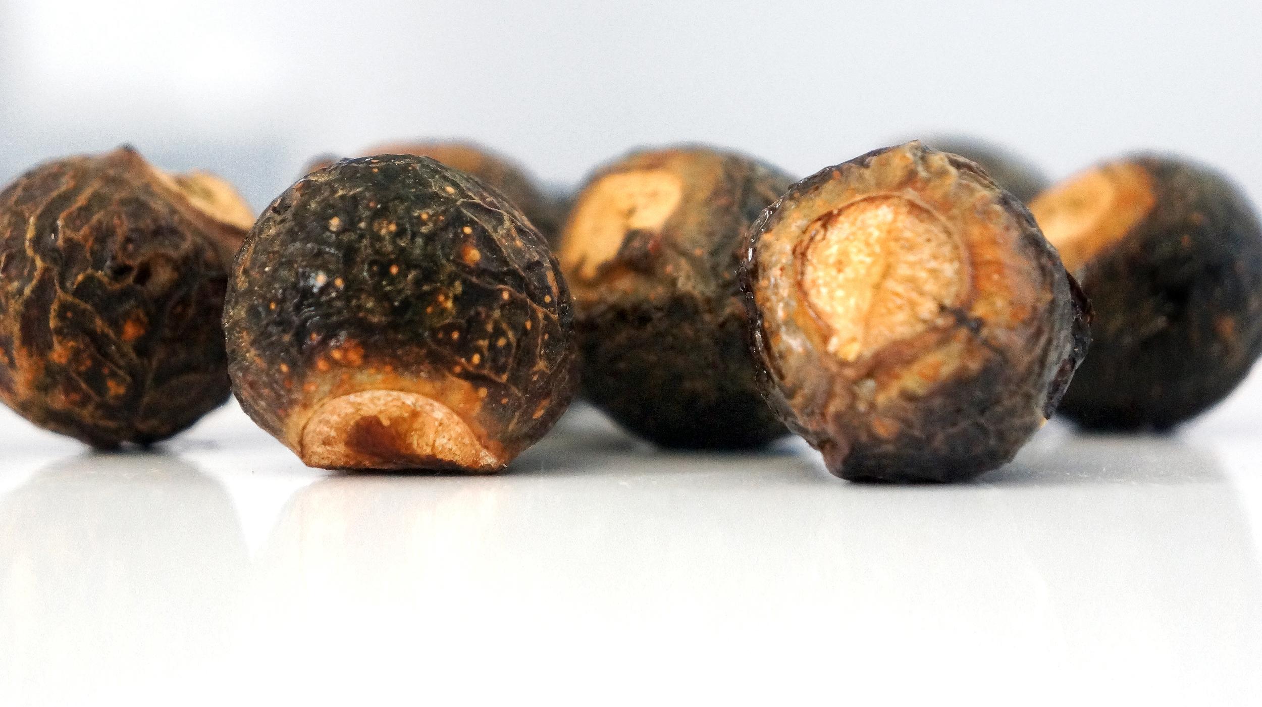 Whole Soapnuts