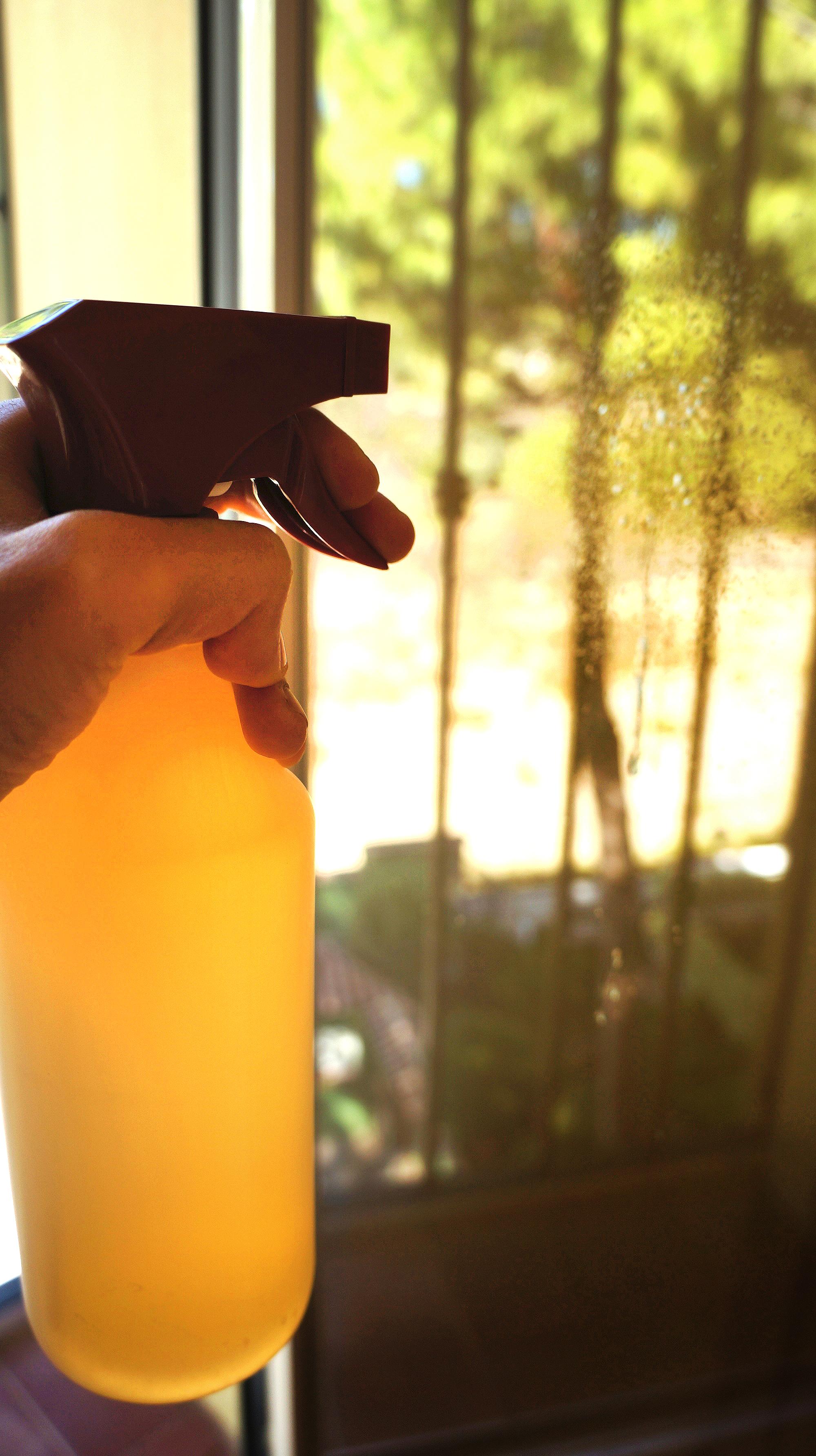Soapnut Liquid, ideal for windows