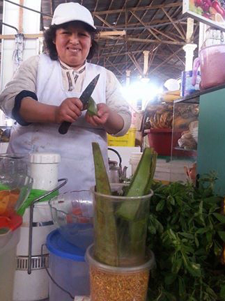 Agregando un pedazo de Aloe Vera al batido