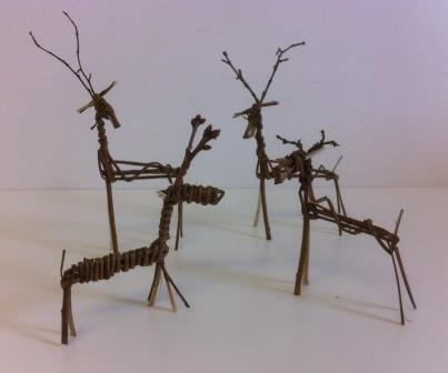 A herd of willow reindeer