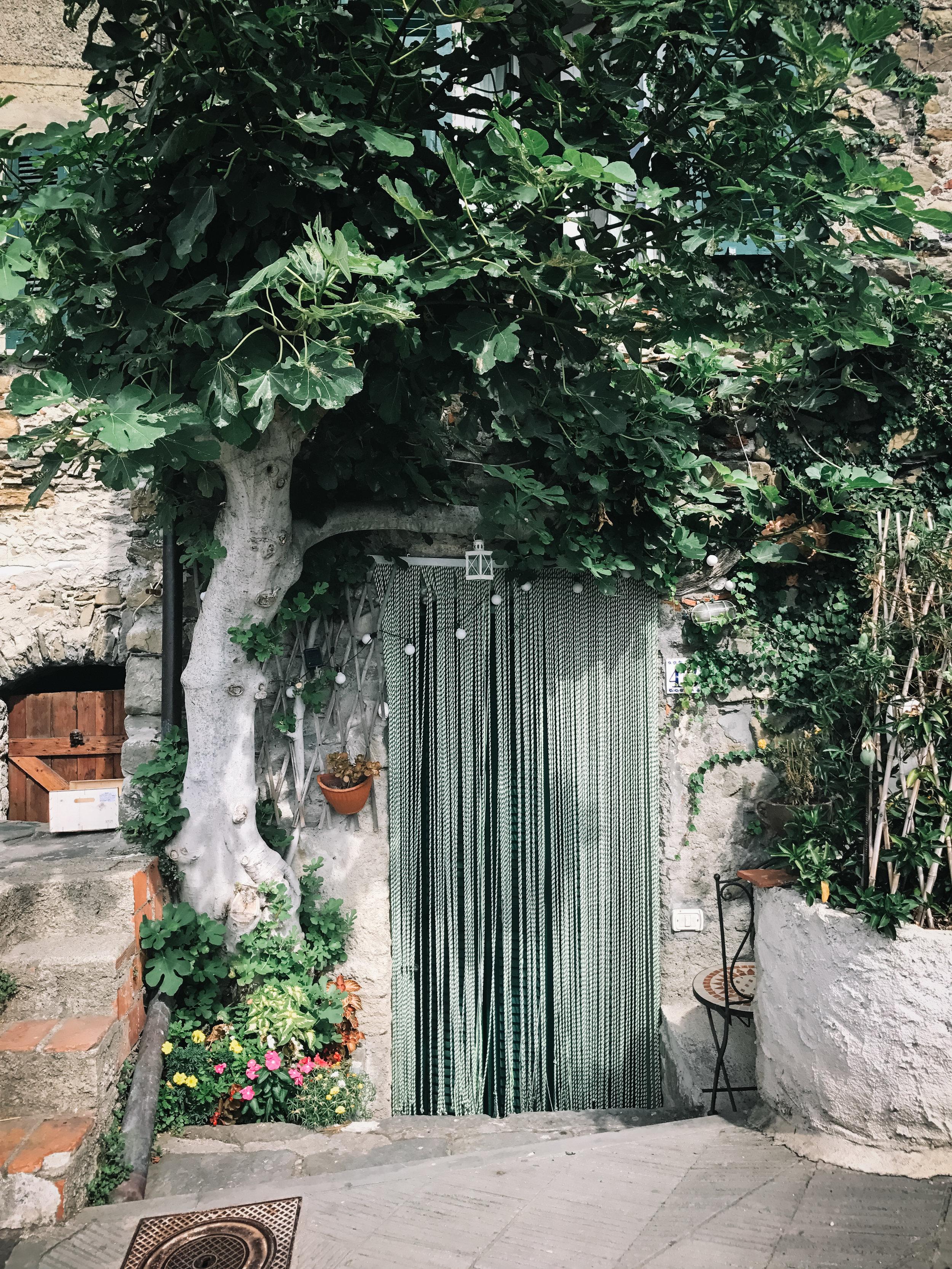 Italy-Cinque Terre-3.jpg