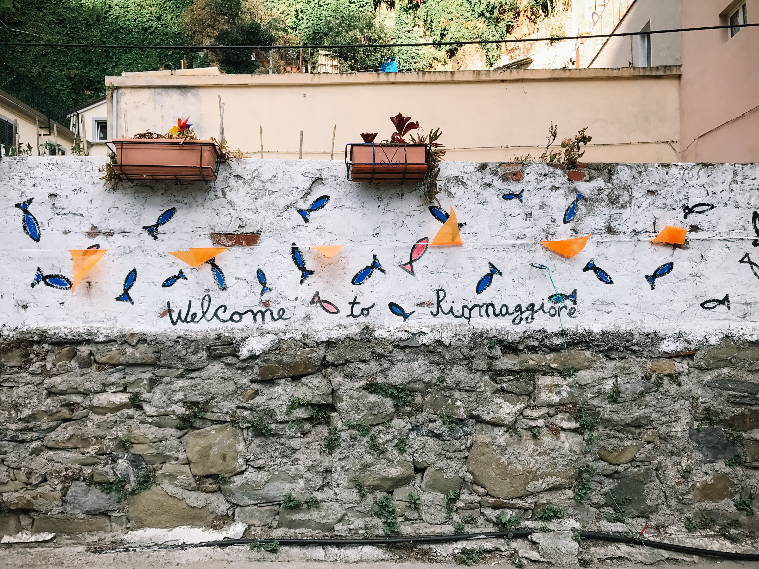 Italy-Cinque Terre-8.jpg