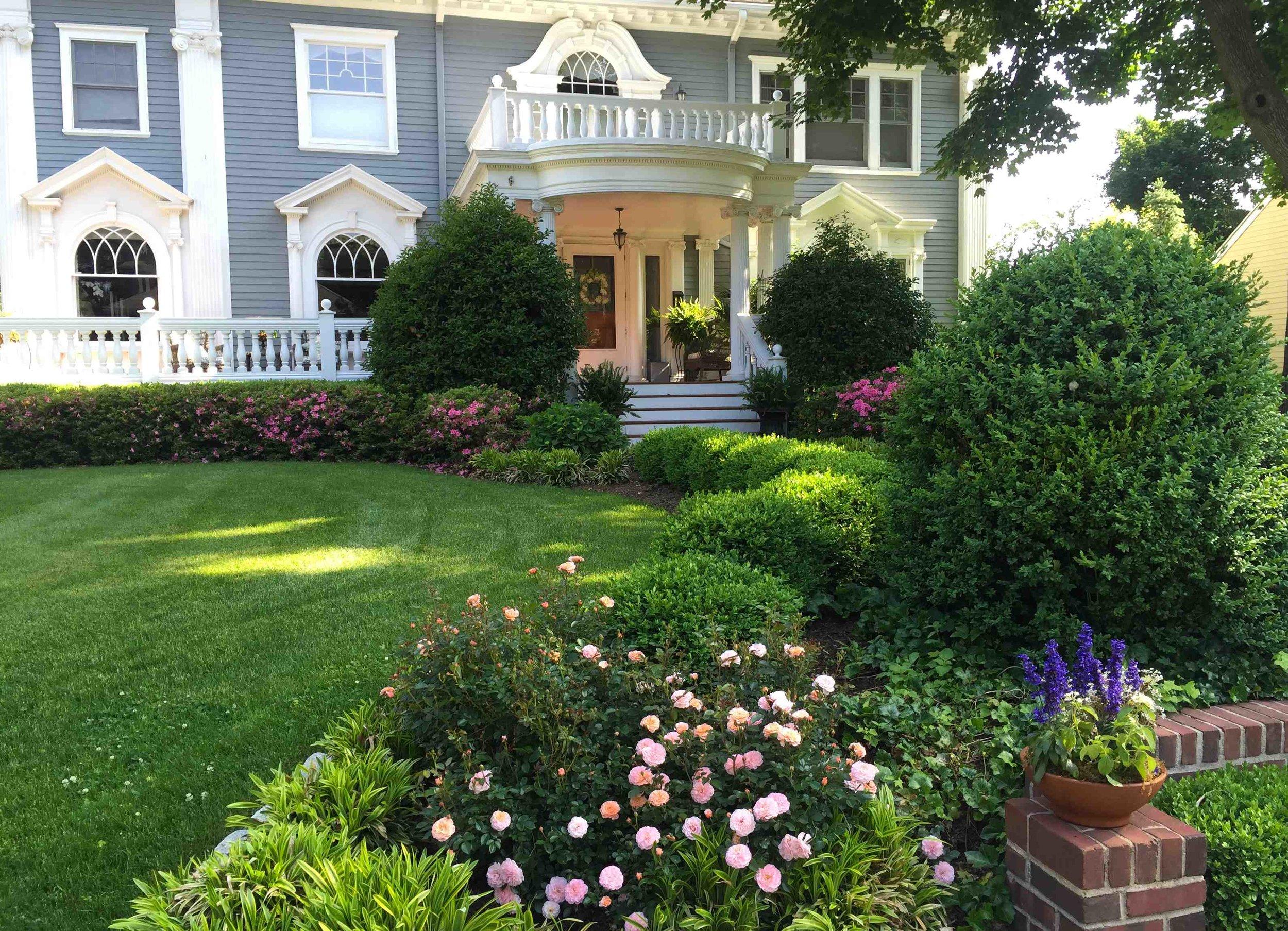 Garden Colonial House Roses Azaleas Boxwood Holly.jpg