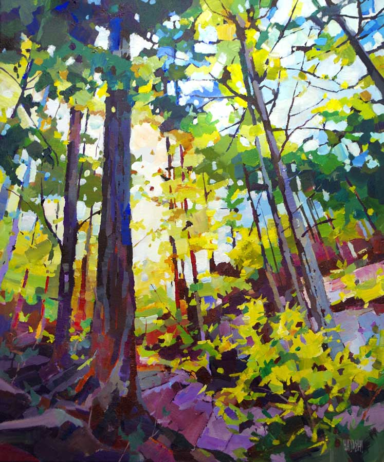 West Coast Canopy 20 x 24