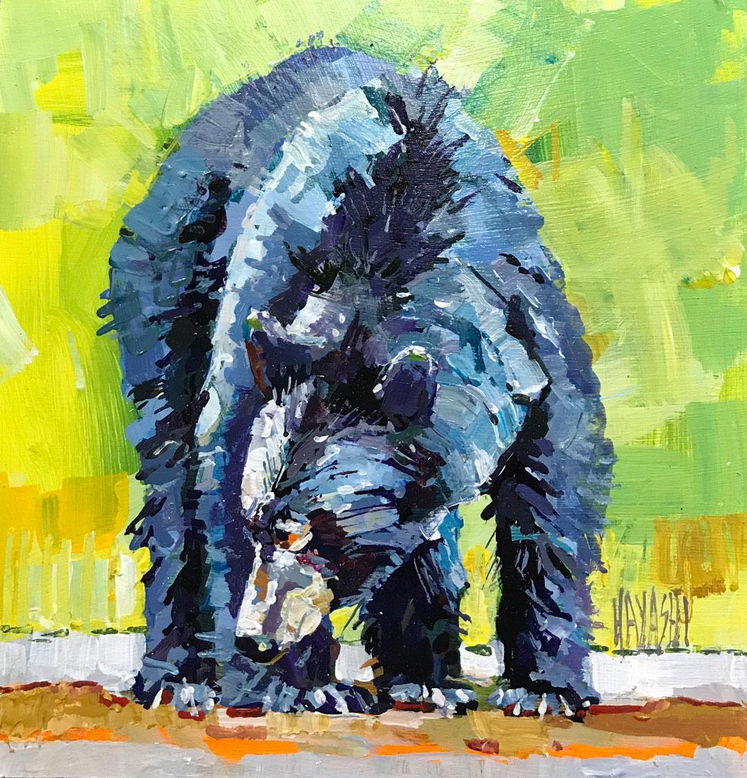 Bear Prowl 7 x 7