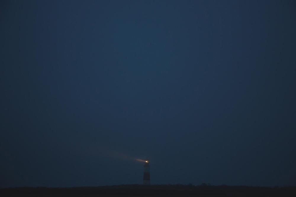 24x36_Lost_In_The_Light.jpg